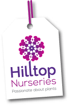 Hilltop Nurseries-At Hilltop Nurseries, your garden centre in Nottingham, you will find a large selection of shrubs, trees, herbaceous perennials, alpines, vegetable plants, bulbs, seeds, soft fruit bushes, bedding and basket plants, hanging baskets, pots, compost and a whole lot more.